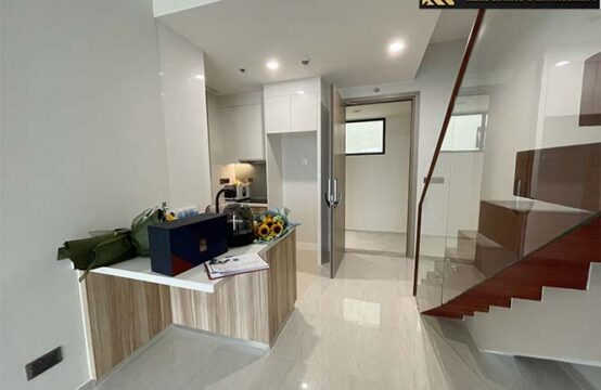 MiniPenthouse Apartment (Q2) for sale in Thao Dien Ward, District 2, Ho Chi Minh City